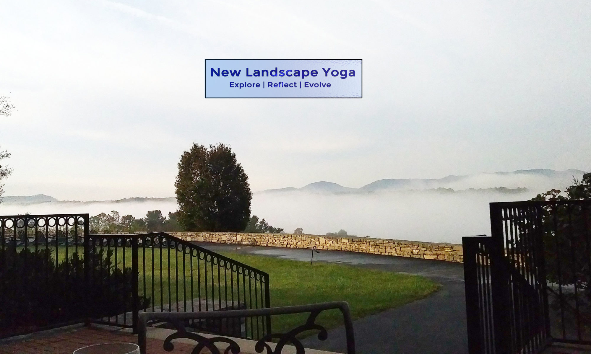 New Landscape Yoga - Yoga for life