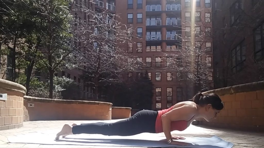 Chaturanga, yoga, form